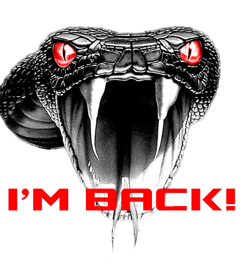 Viper Is Back